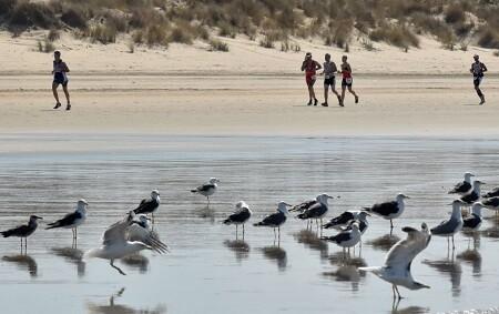 carrera a pie en el Desafio Doñana