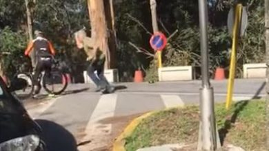 Photo of Video: Incredible but true. A trucker assaults two cyclists with a hammer