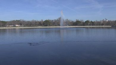 Ya se puede volver a nadar en el Lago de Casa de Campo de Madrid
