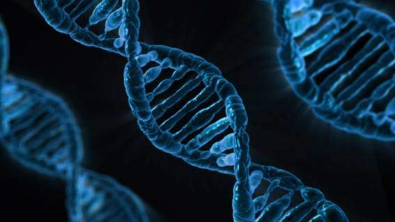Photo of How does genetics influence sports? The genetic test