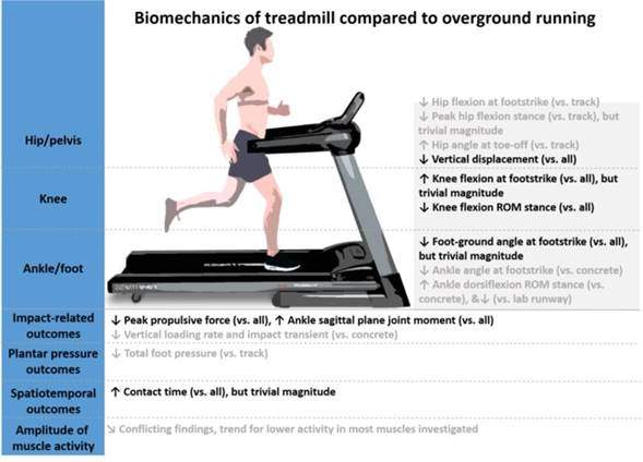 significant differences between treadmill running and surface running