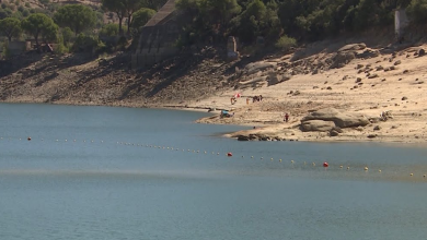 Photo of Where to swim if you live in Madrid and surroundings?