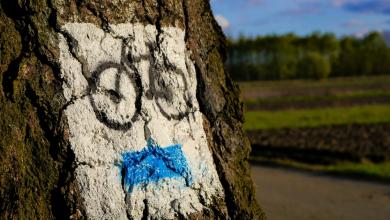 Libros de Ruta cicloturista españa