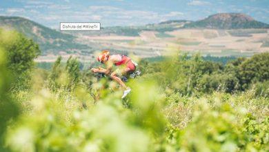 Photo of La Rioja Triathlon postponed to June 2021