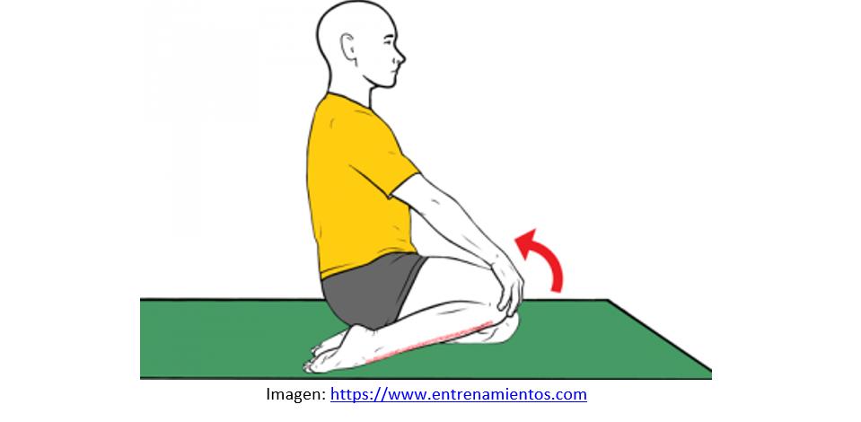 Prevención de lesiones con Skechers. Guía de ejercicios y estiramientos