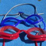 Gafas Tiger Race HEAD SWIMMING