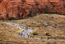11 tests IRONMAN le week-end
